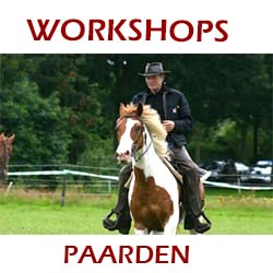 workshop paarden